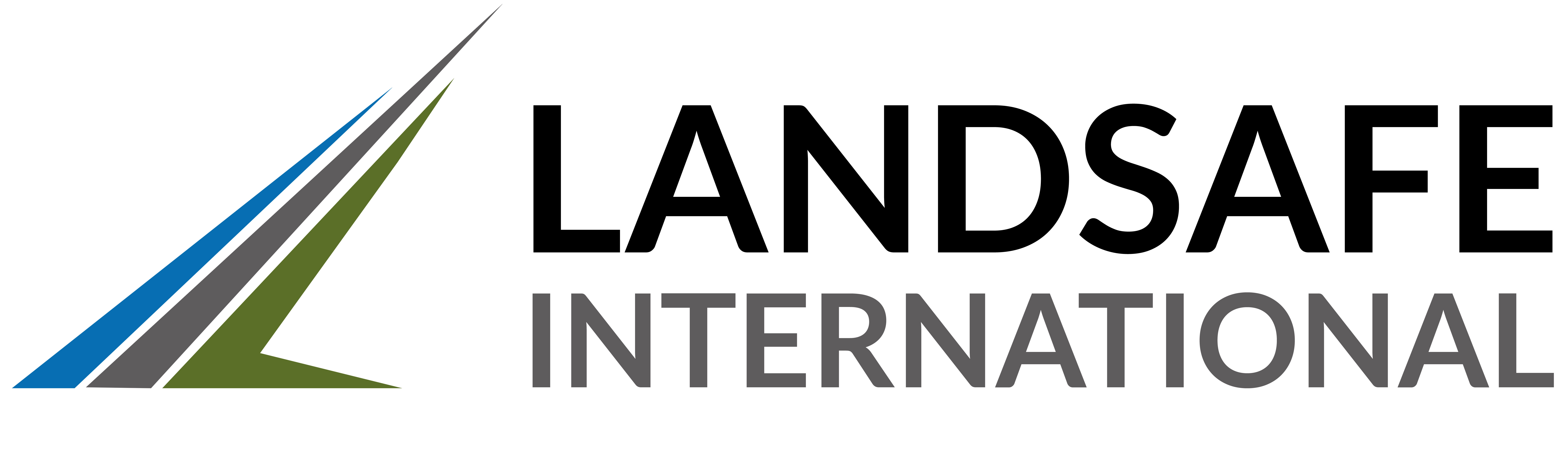 Landsafe International logo